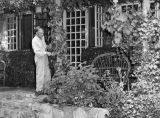 Harry Lamson trims ivy on vine-covered porch in Tujunga