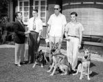 Guiding eye dogs presented to blind