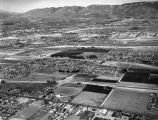 Tri-City Drive-In, Loma Linda, looking northwest