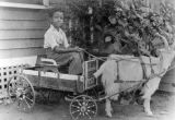 Boy in a carriage