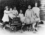Siblings with carriage