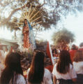 Our Lady of Guadalupe procession