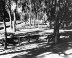 Picnic area in Elysian Park