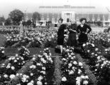 Three women in rose garden