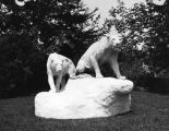Statues of extinct lions