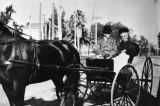 Two passengers in horse and buggy