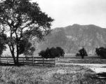 Sphinx Ranch, Altadena