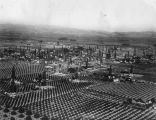 Santa Fe Springs oil fields