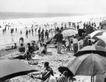 Crowds at Santa Monica beach