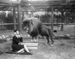 Young woman and a lion