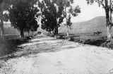 View of Coyote Pass, Pasadena